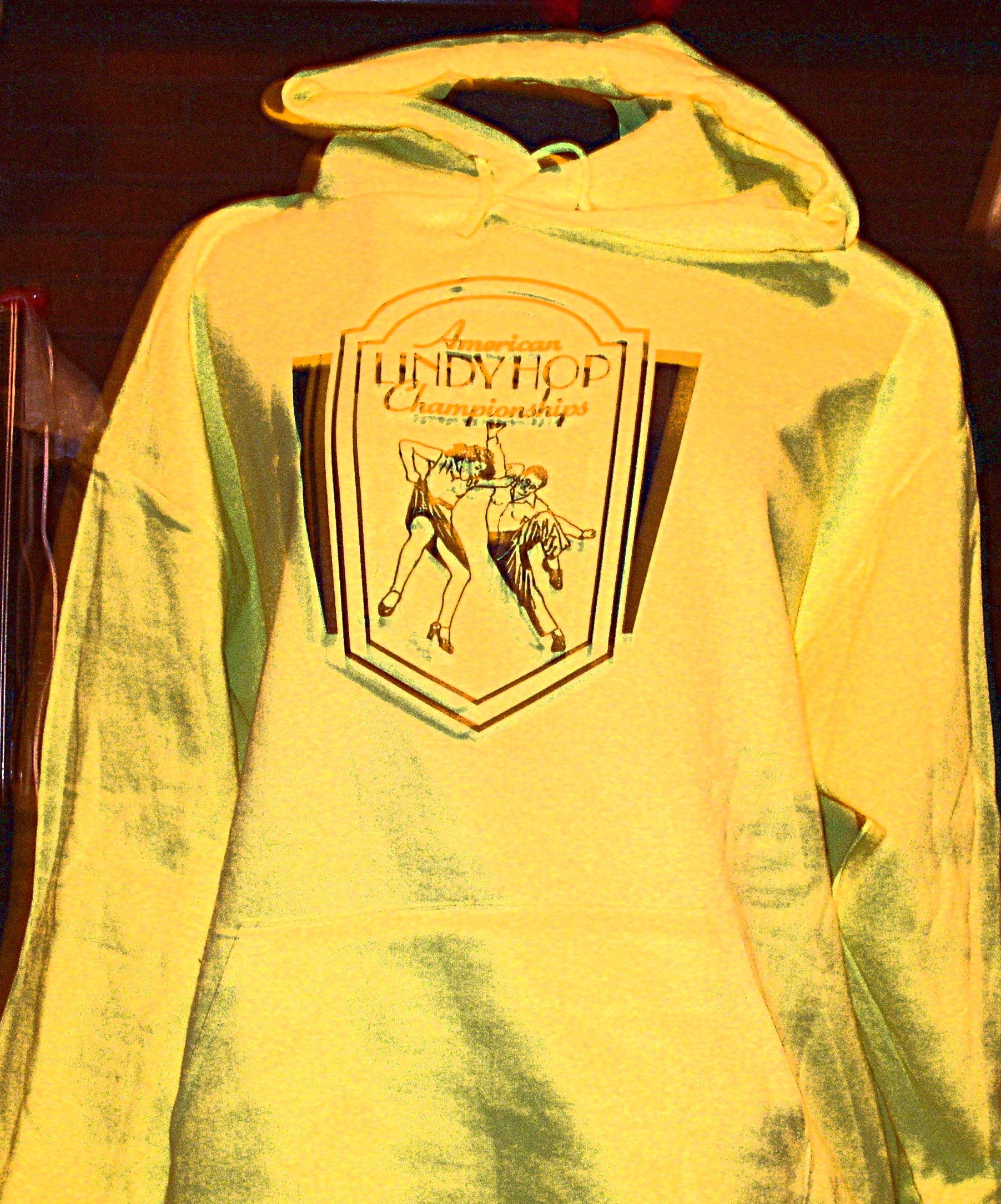 ALHC Hoodie with logo on chest